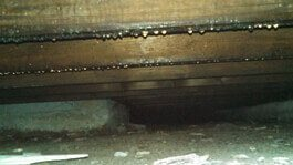 Crawl Space Repair Services Southerdry Pell City