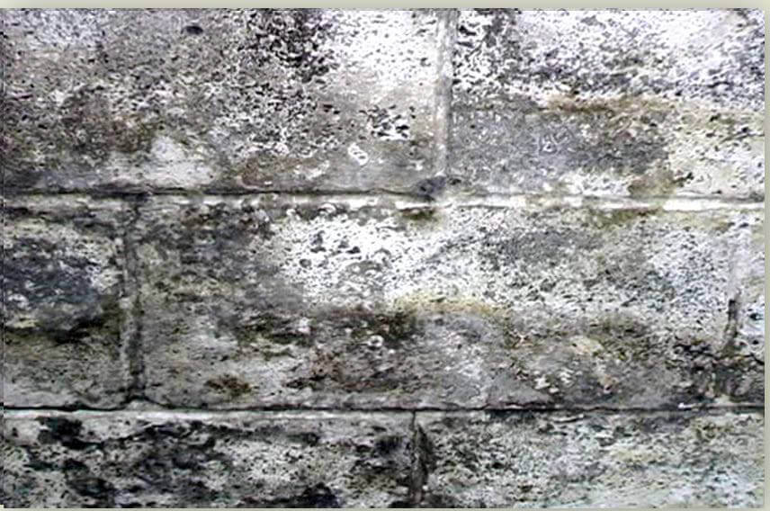 before house waterproofing