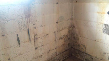 Before Mold Remediation | Wet Basement Block Wall | Jasper Alabama