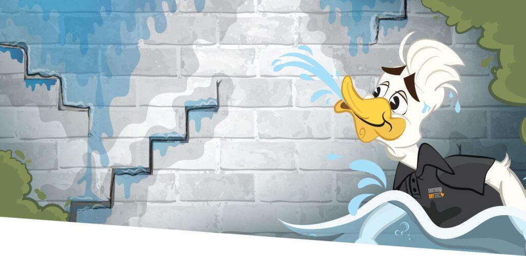 leaky basement walls